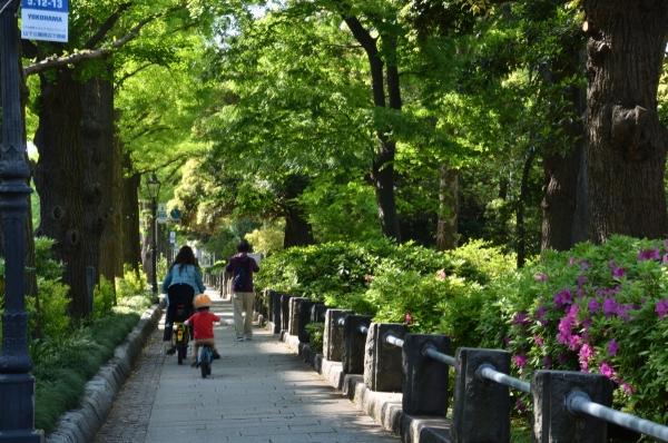 横浜散歩1