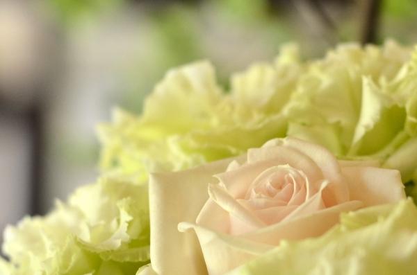 ベーリック花と器11