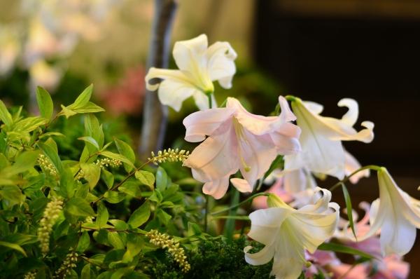 234花と器17