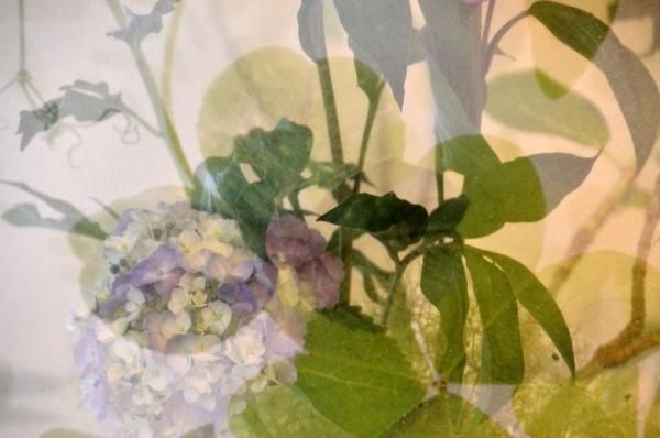 234花と器28