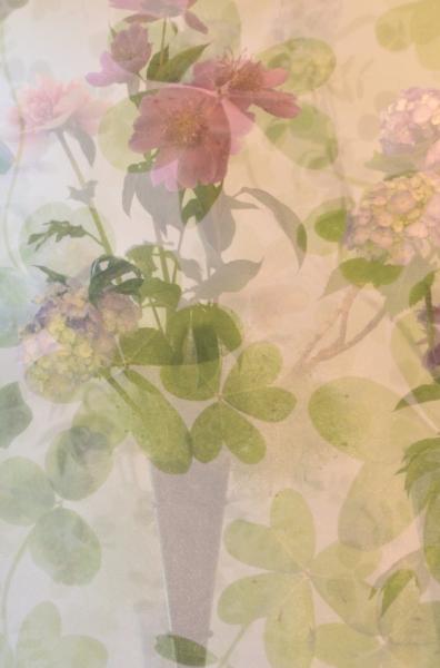 234花と器26