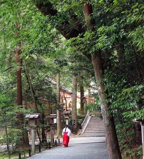 180723狭井神社