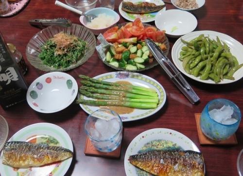 アスパラ姿茹で、一口さつま揚げとキュウリ&トマト、塩サバ大根おろし、オカヒジキとツナの和え物、枝豆塩ダレ炒め