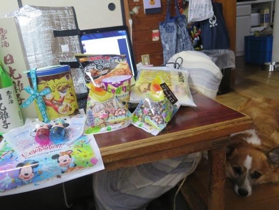 父の日のプレゼントと犬