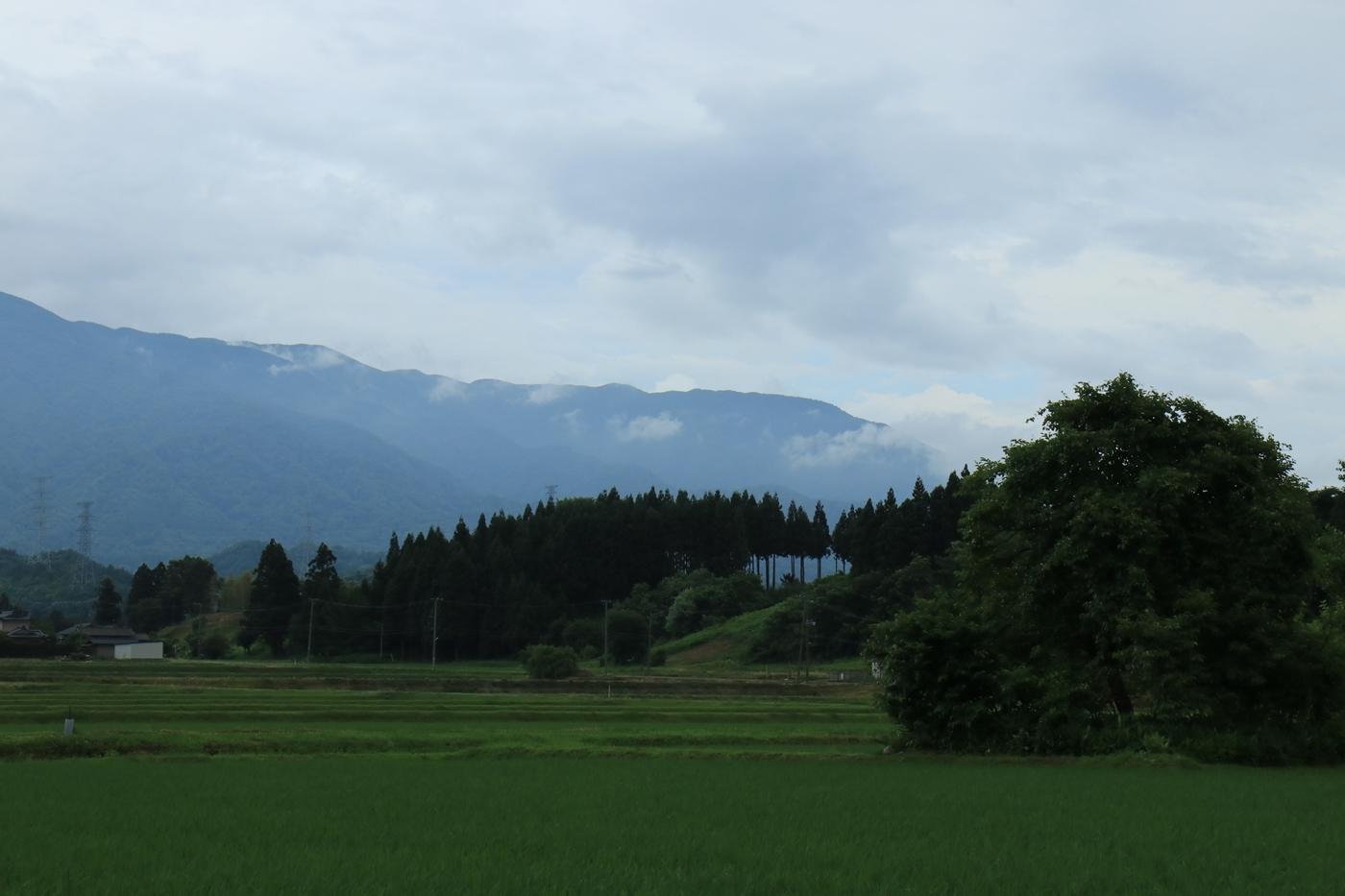 ●S2013・6・29アヤメ山_106
