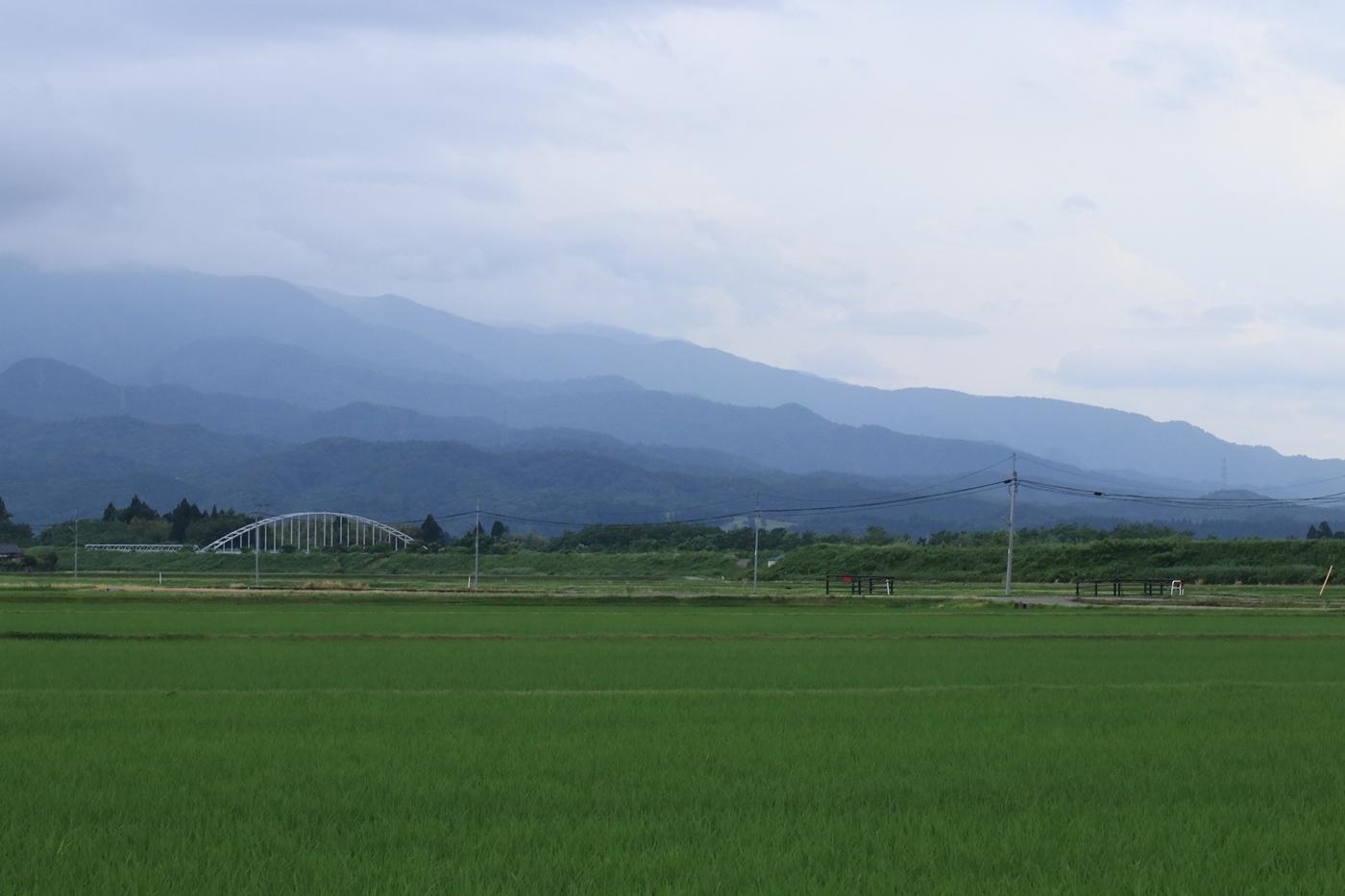 ●SP2013・6・29アヤメ山_72