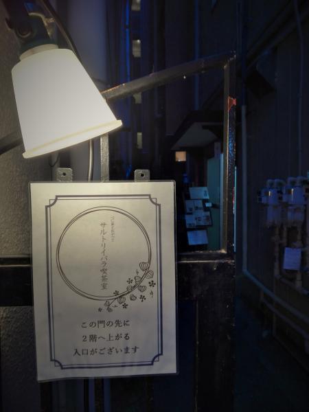 3.23 東京 サルトリイバラ