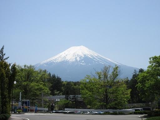 リサとガスパールタウン付近より富士山