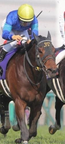 【香港競馬】ファインニードル 香港G1でトミー・ベリー騎手と新コンビ