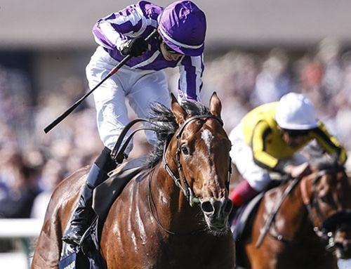 【海外競馬】偉業達成のサクソンウォリアーはムーア騎手で英ダービー 英クラシック三冠を意識