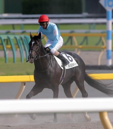 【日本ダービー】武豊騎手(ジャンダルム=17着)「今後は適距離の路線で活躍してほしい。マイルくらいが合っている」