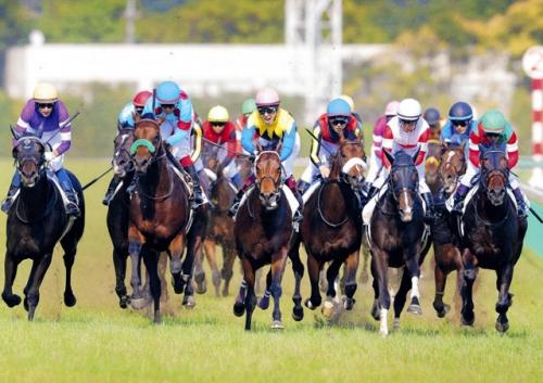 【日本ダービー】古馬になってから、国内の芝中長距離GⅠ勝てそうなやつはいるか?