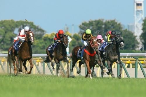 【競馬】矢作師「モズアスコットはいずれ世界で戦う馬、世界的な種牡馬にしたい」