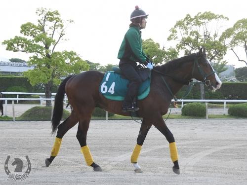 【競馬新馬】武豊が二歳馬ダノンシティを大絶賛!「凄い!良い動き!走りそう!」