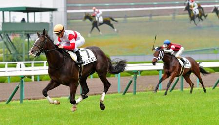 【競馬新馬】宝塚の日の阪神1800の新馬戦が伝説になりそうな件