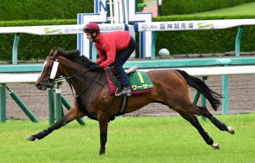 【宝塚記念2018】で馬券圏内に来ない馬募集
