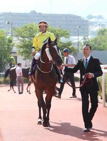 【宝塚記念】-27kgで調整失敗のワーザーに2着に来られる日本競馬のレベルの低さwww