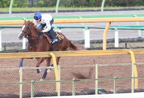 【競馬予想】第67回 ラジオNIKKEI賞(GIII)