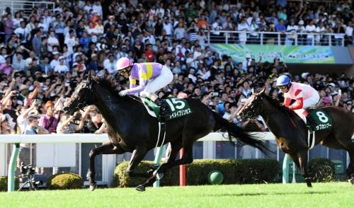 【レース回顧】サマースプリントシリーズ 第18回 アイビスサマーダッシュ(GⅢ) 反省会