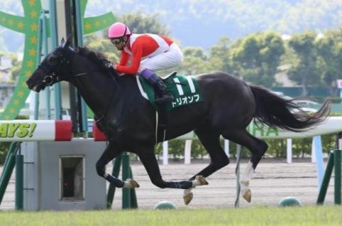 【競馬】トリオンフ強すぎワロタ