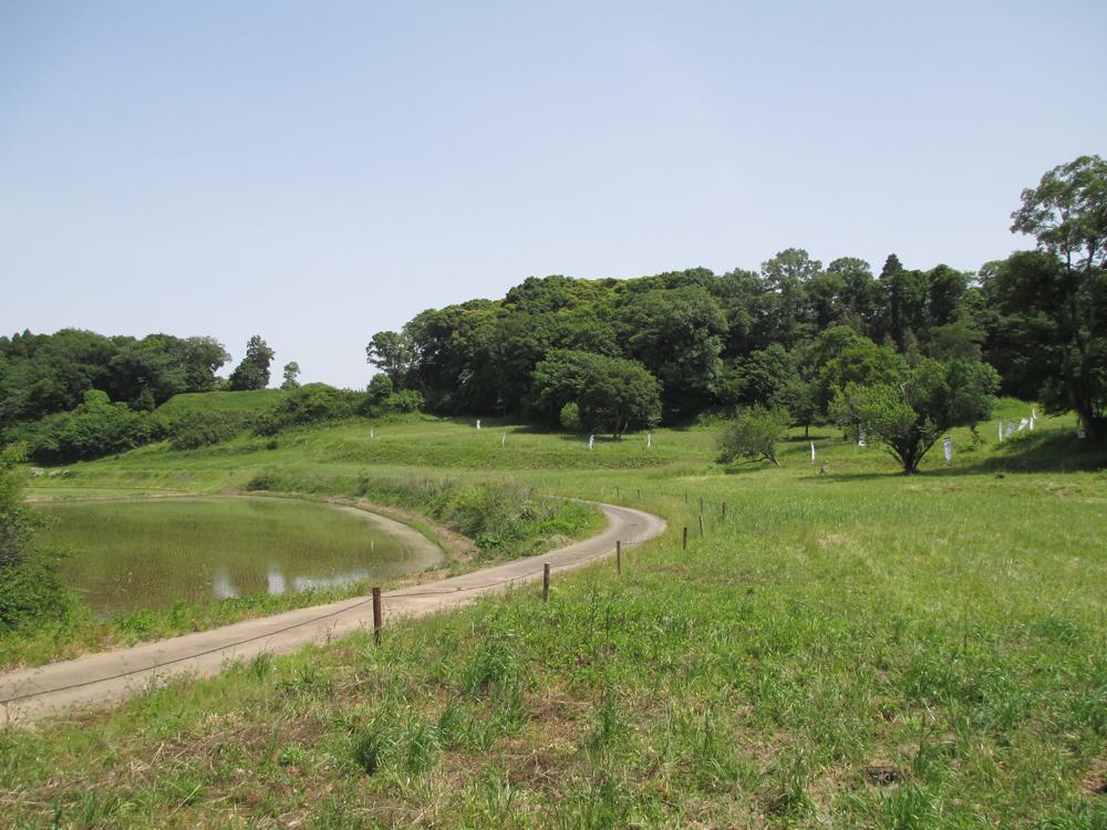 本佐倉城 001-3
