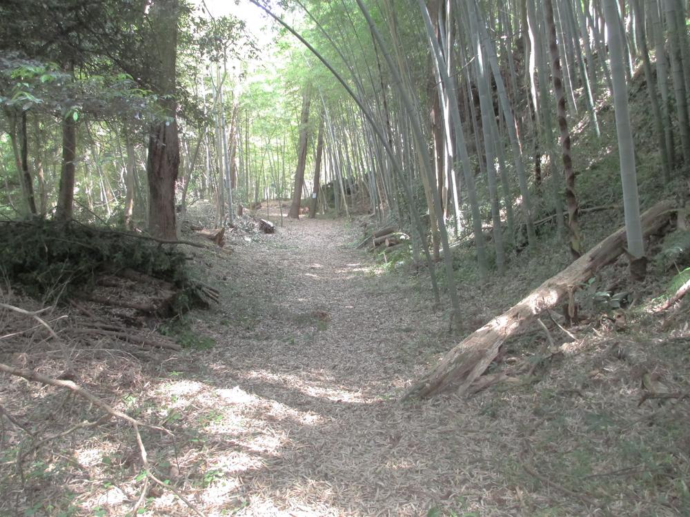 本佐倉城 002-7