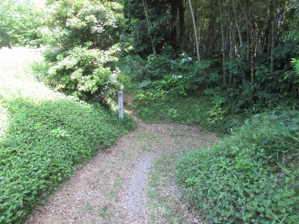 本佐倉城 006-4