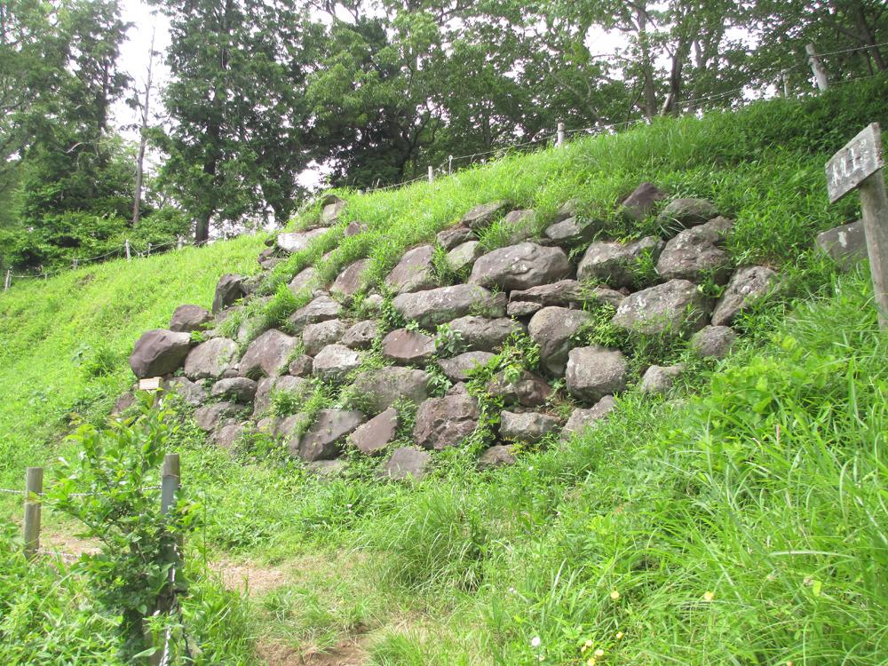 興国寺城 003-1