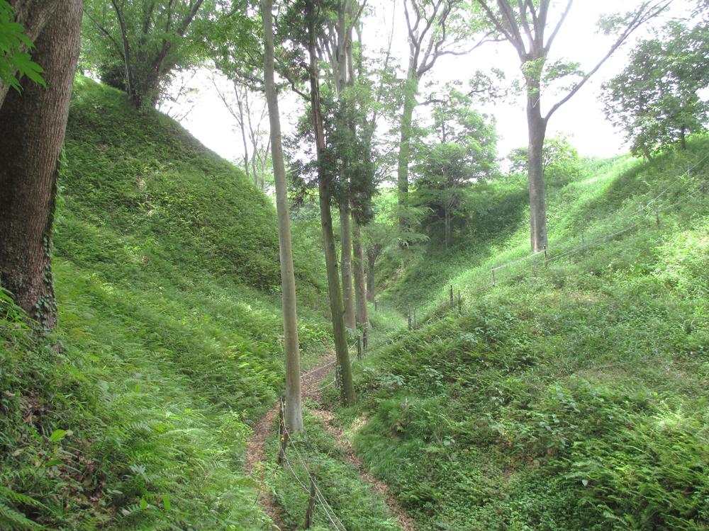 興国寺城 004-3