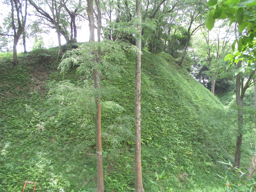 興国寺城 004-6