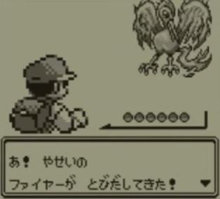 橋本環奈「ファイアーをマスターボールで捕まえといたよ!」