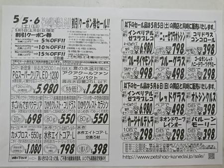201804271943597a8.jpg