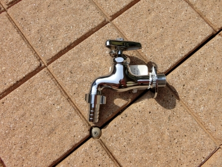 MG5468.jpg