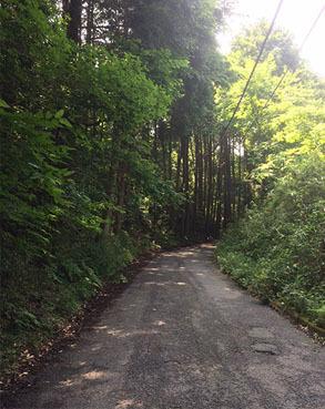遊びの森02