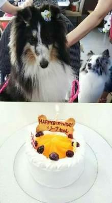 リーナちゃん 誕生日ケーキ