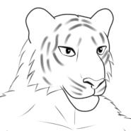 モブ忍者獣人 トラ顔線画