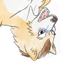 浮かされたモブ狼 シャーペン縛り顔