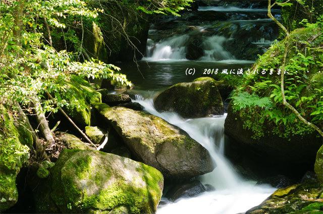 滋賀・鶏鳴の滝6