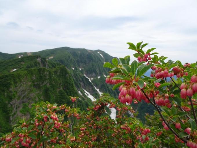浅草岳を眺めて鬼ヶ面山へ