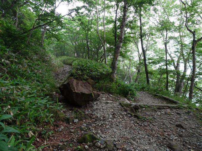岩が落ちてきた?