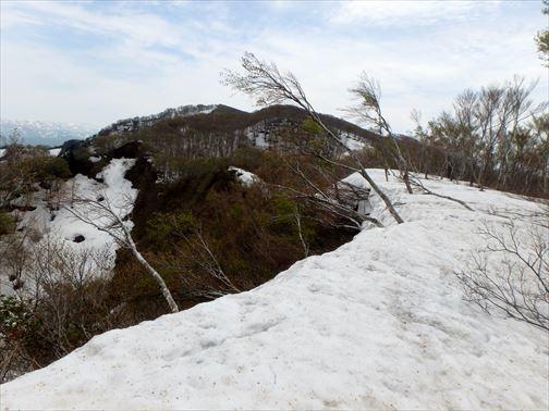 4.29 湯ノ沢岳~母狩山 069_R