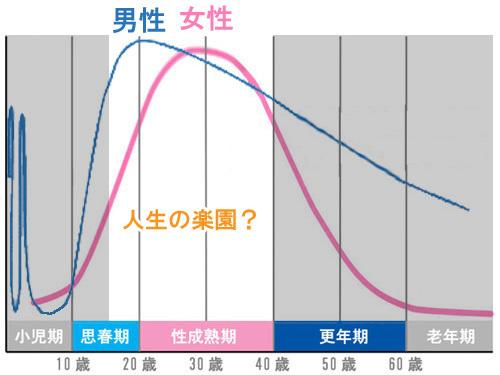 男性ホルモン女性ホルモンの変化の表