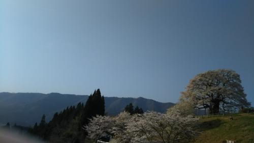 DSC_0227-1.jpg