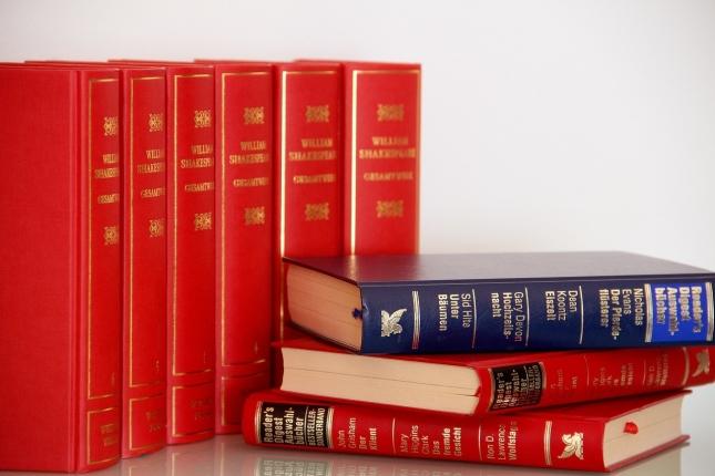 literature-3259341_1280.jpg