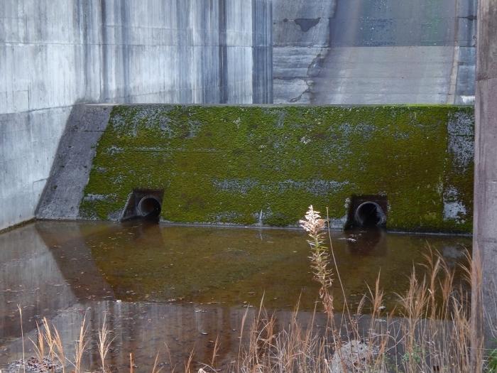 DSCN4287台ダム