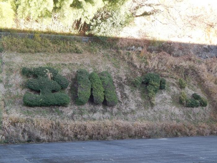 DSCN4323玉川ダム