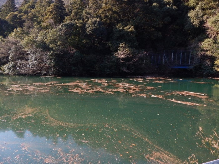 DSCN4364中山川逆調整池ダム