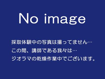 20180723_006.jpg