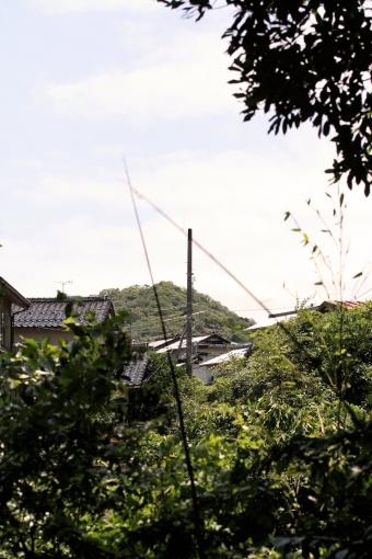 山代神社から見た茶臼山