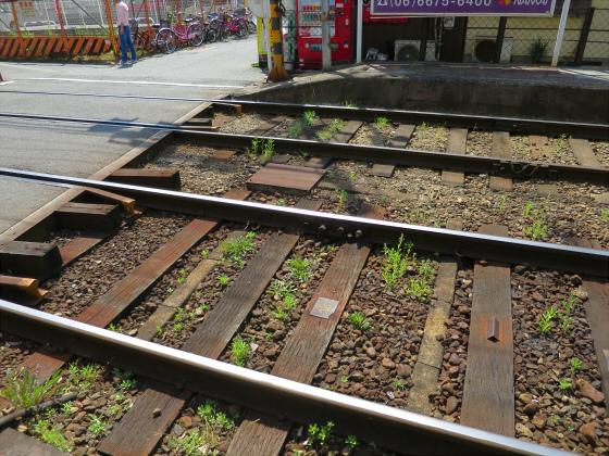 2015年阪堺電車で浜寺へ04